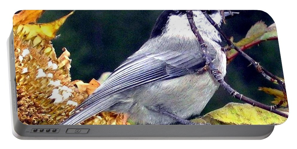 Autumn Portable Battery Charger featuring the photograph Feast For A Chickadee by Will Borden