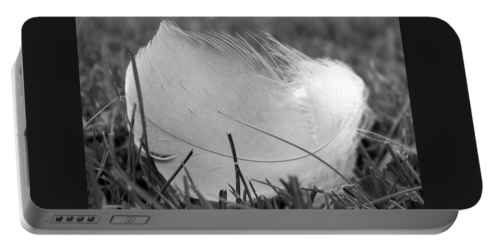 Black-and-white Portable Battery Charger featuring the photograph Feather by Helene Samson