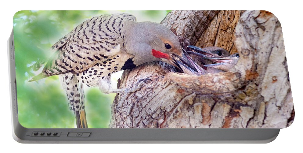 Flicker Portable Battery Charger featuring the photograph Feeding Babies In The Nest by Judi Dressler