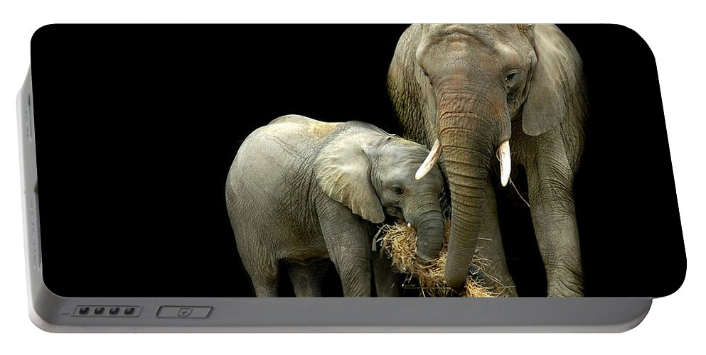 Elephant Portable Battery Charger featuring the photograph Feeding Time by Stephie Butler