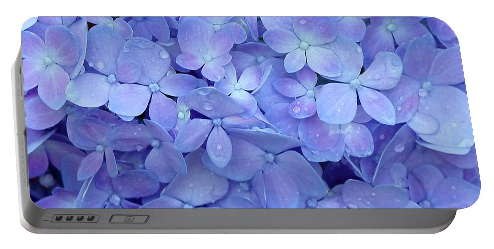 Blue Portable Battery Charger featuring the photograph Feeling Blue by Sabrina L Ryan