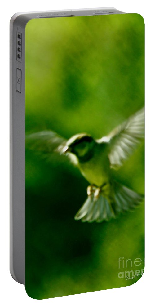 Animal Portable Battery Charger featuring the photograph Feeling Free As A Bird Wall Art Print by Carol F Austin