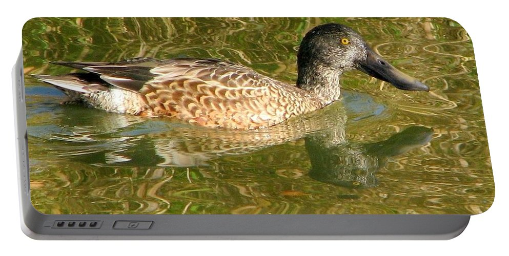 Animal Portable Battery Charger featuring the photograph Female Gadwall by Frank Townsley