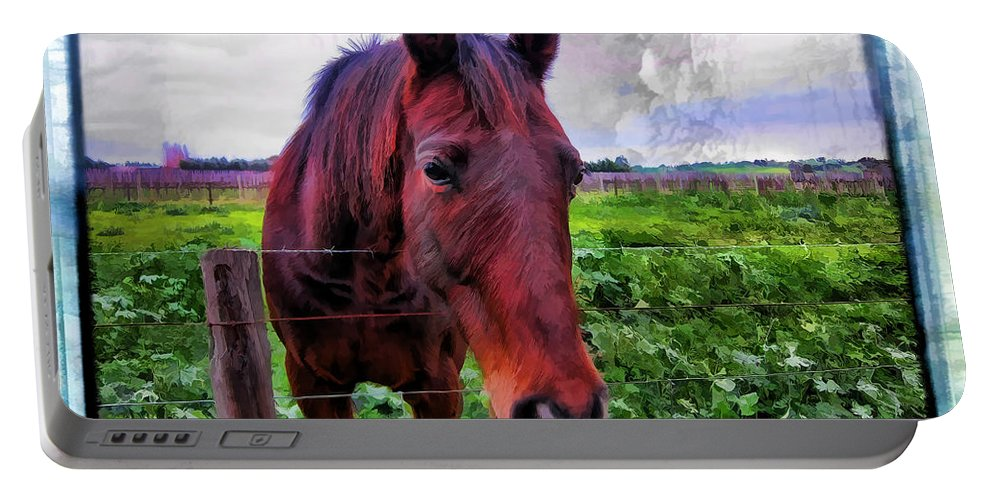 Horse Portable Battery Charger featuring the photograph Fence Chat by Douglas Barnard