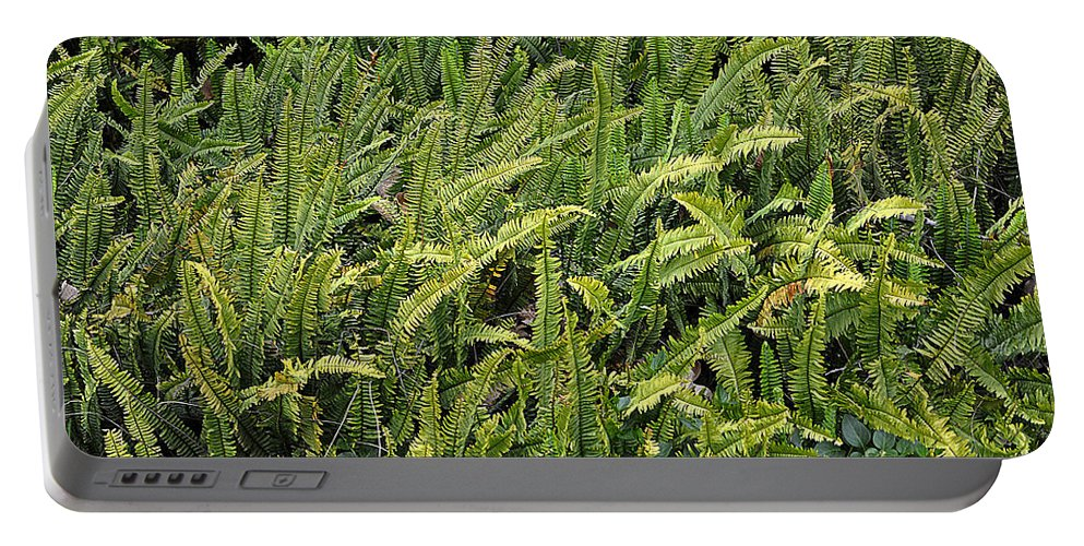 Clay Portable Battery Charger featuring the photograph Fern by Clayton Bruster