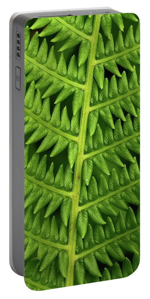 Fern Portable Battery Charger featuring the photograph Fern Frond by Bruce J Robinson
