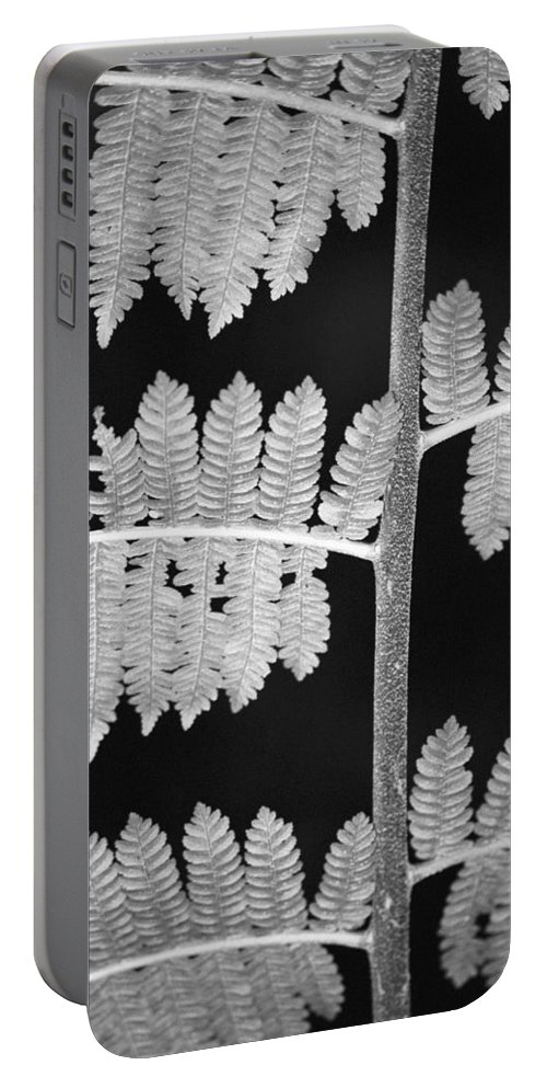 Fern Leaves Portable Battery Charger featuring the photograph Fern Leaves 1 by Donna Corless