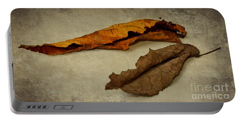 Autumn Portable Battery Charger featuring the photograph Feuilles D'automne by Angela Doelling AD DESIGN Photo and PhotoArt