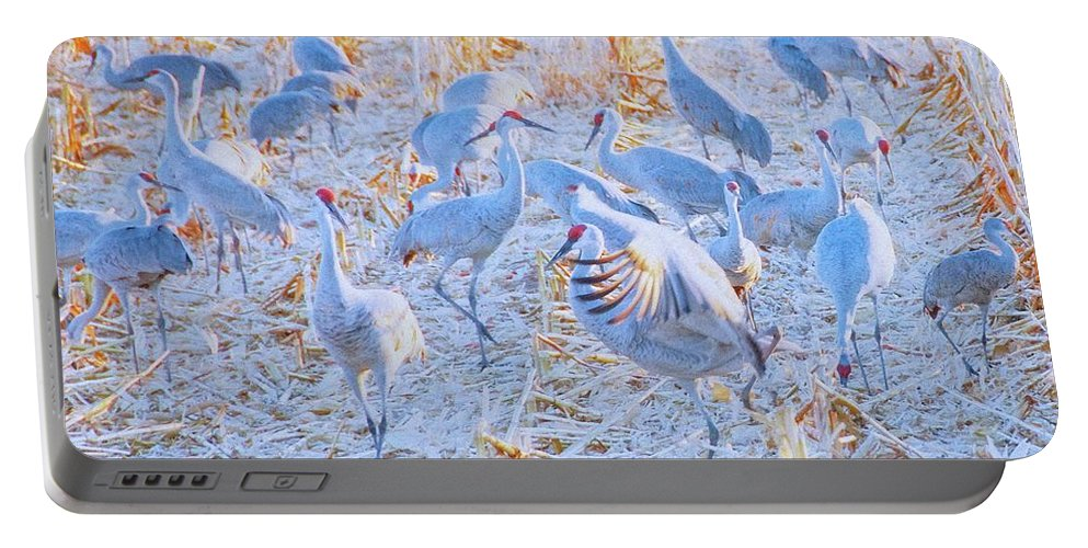 Camera Art Portable Battery Charger featuring the photograph Field of Cranes, Sandhills by Zayne Diamond Photographic