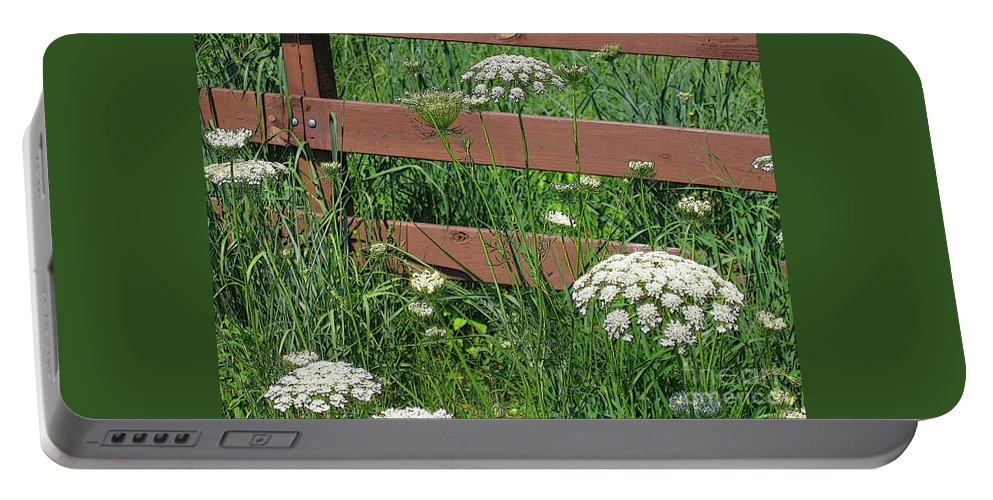 Flower Portable Battery Charger featuring the photograph Field Of Lace by Ann Horn