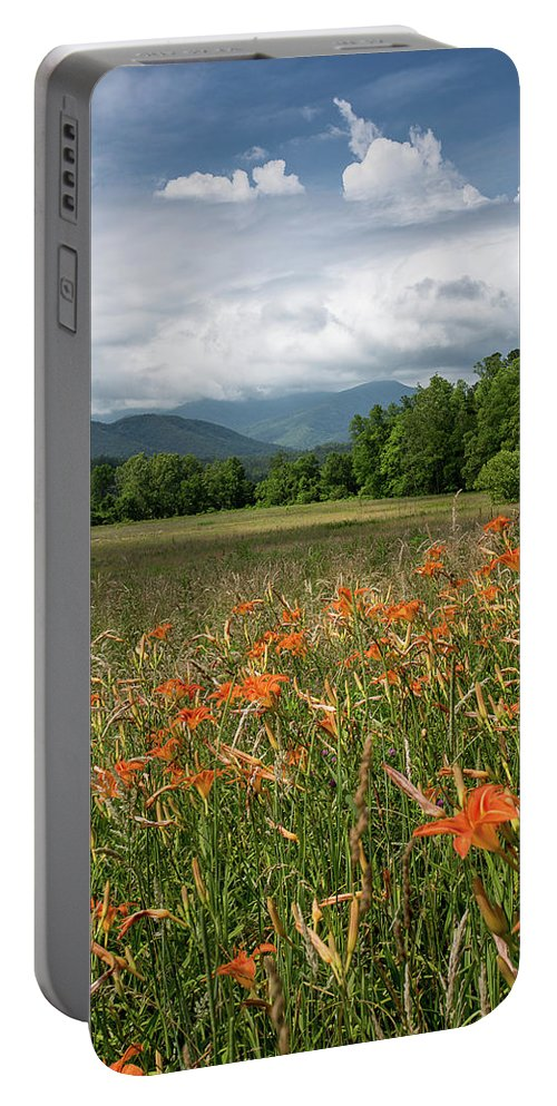 Cloud Portable Battery Charger featuring the photograph Field Of Orange Daylilies by Benjamin King