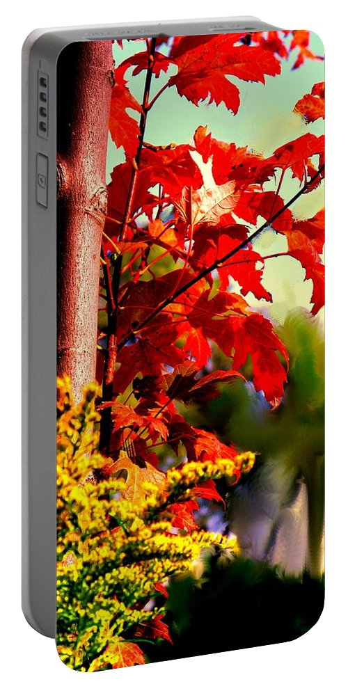 Red Portable Battery Charger featuring the photograph Fiery Red Autumn by Ian MacDonald
