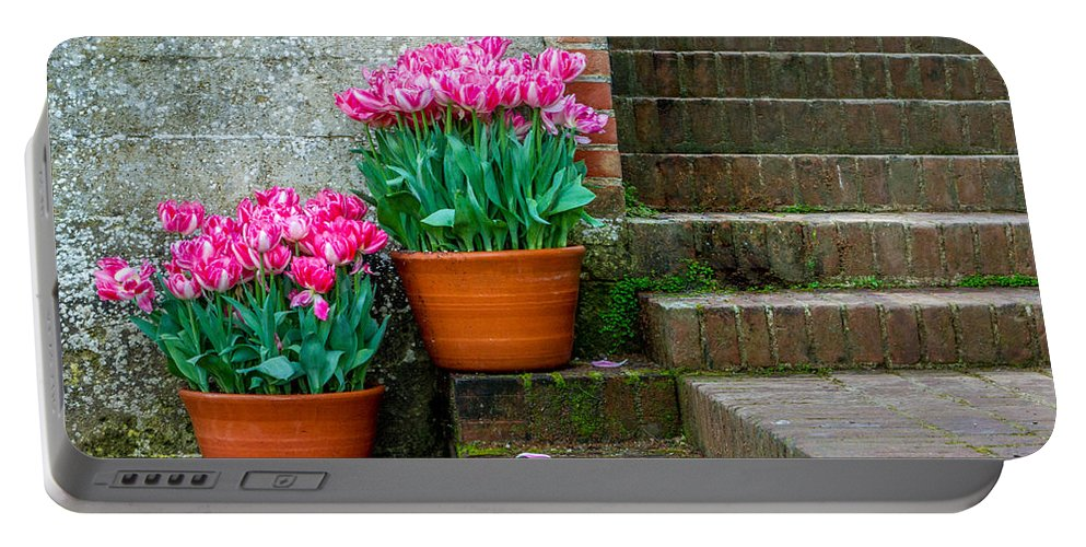 Garden Portable Battery Charger featuring the photograph Filoli Tulips by Bill Gallagher