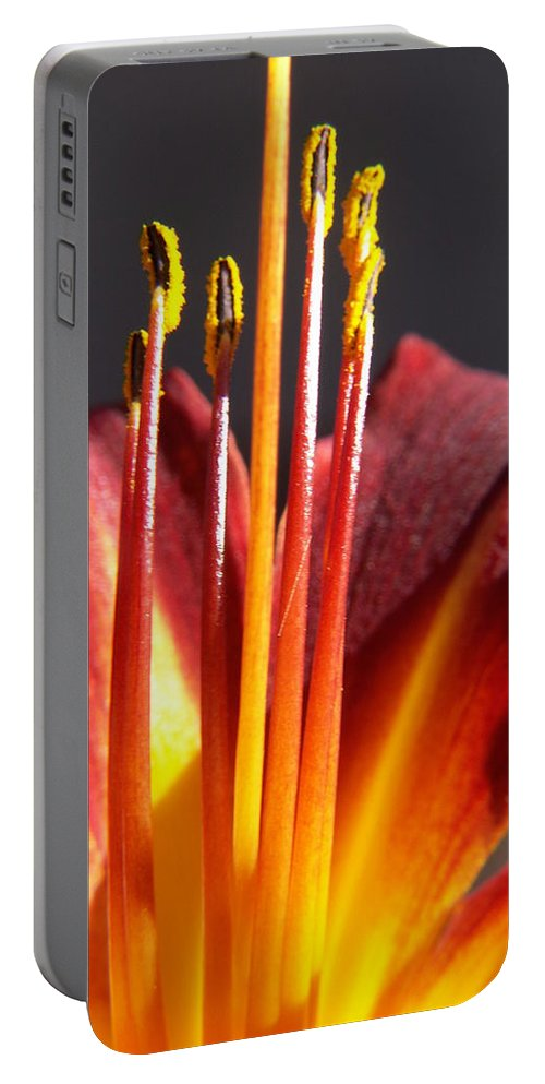 Fire Lily Portable Battery Charger featuring the photograph Fire Lily by Amy Fose
