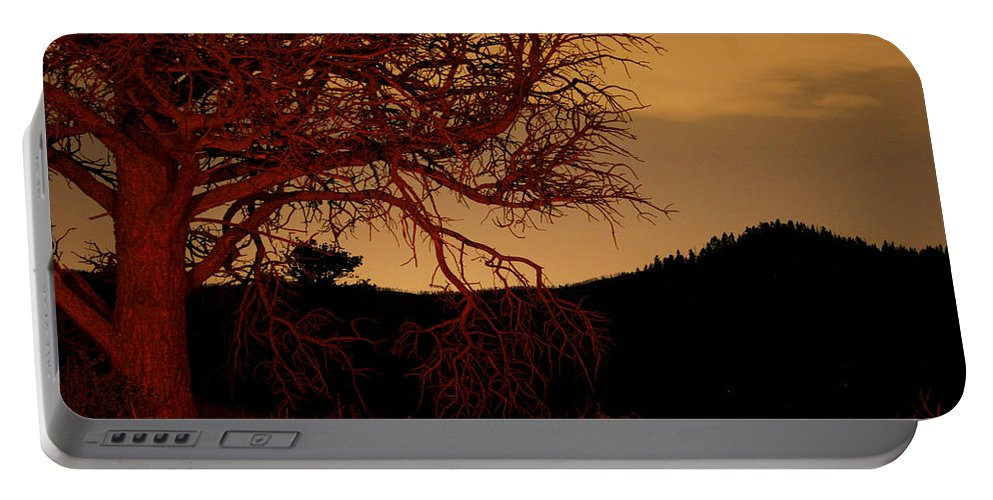Landscape Portable Battery Charger featuring the photograph Fire Tree by Jeffery Ball