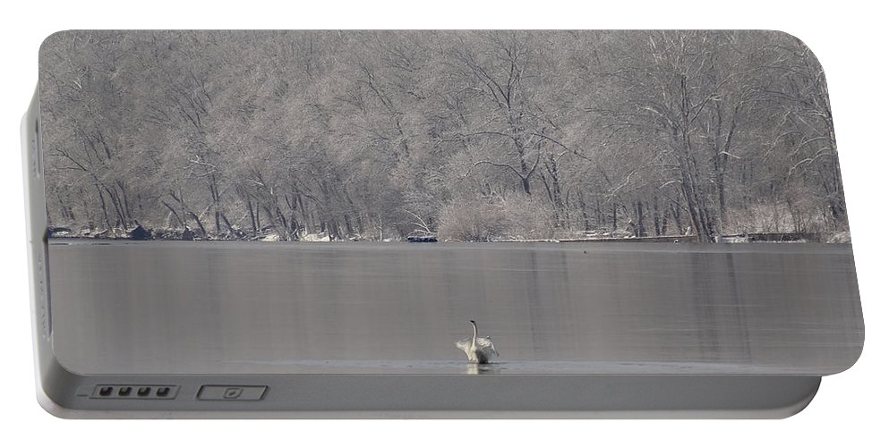 Birds Portable Battery Charger featuring the photograph First Day Of Spring Swan Lake by Christopher Plummer