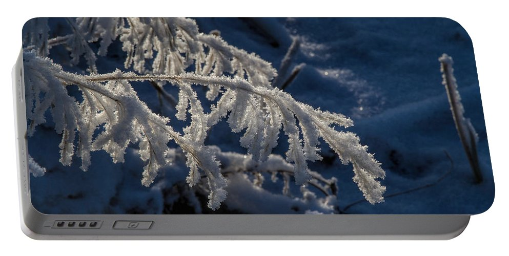 Frost Portable Battery Charger featuring the photograph First Light by Alana Thrower