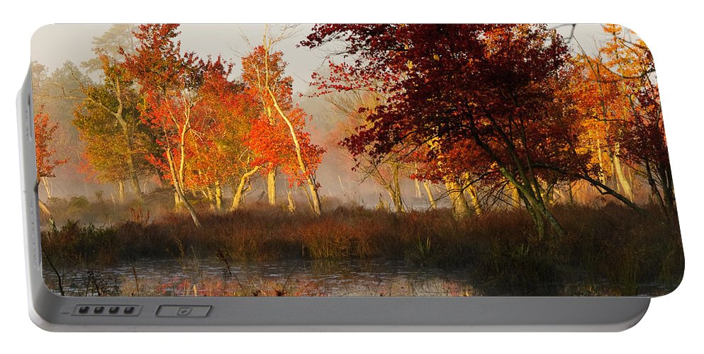 Landscape Portable Battery Charger featuring the photograph First Light At The Pine Barrens by Louis Dallara