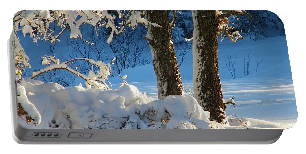 Winter Portable Battery Charger featuring the photograph First Light by Gale Cochran-Smith