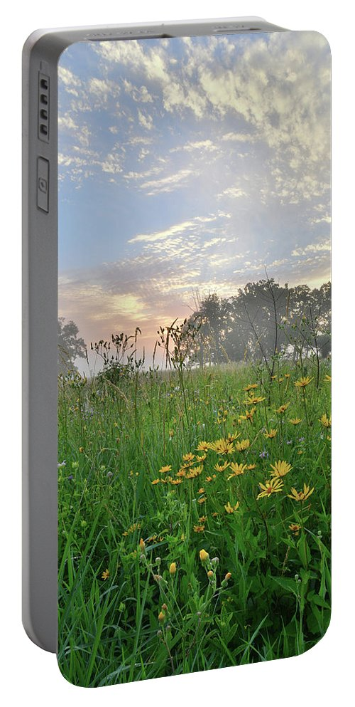 Black Eyed Susan Portable Battery Charger featuring the photograph First Light In Glacial Park by Ray Mathis