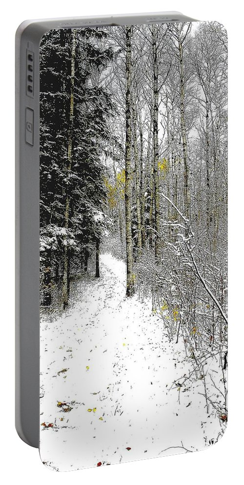 Winter Portable Battery Charger featuring the photograph First Snowfall by Nelson Strong