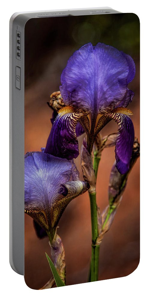 Beautiful Portable Battery Charger featuring the photograph First Time Blooming by Diana Powell