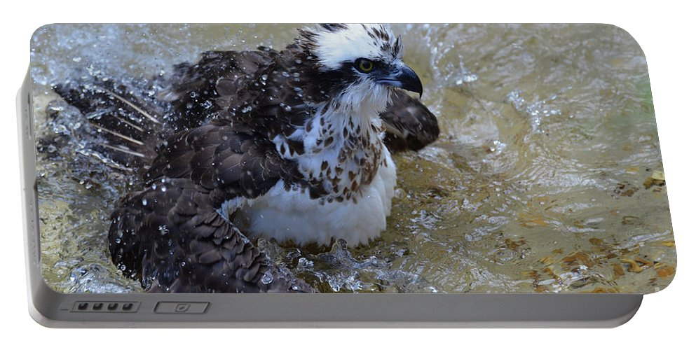 Osprey Portable Battery Charger featuring the photograph Fish Hawk Splashing In Water by DejaVu Designs