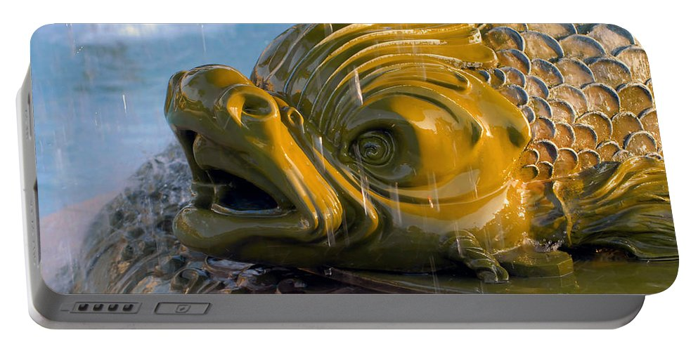 Fish Portable Battery Charger featuring the photograph Fish Out Of Water by David Lee Thompson