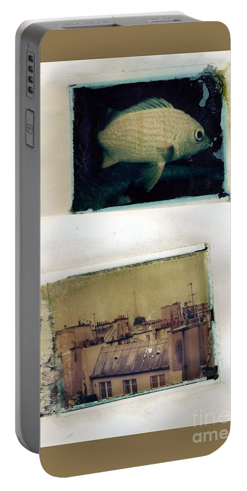 Fish Portable Battery Charger featuring the photograph Fish Over Paris by Madeline Ellis