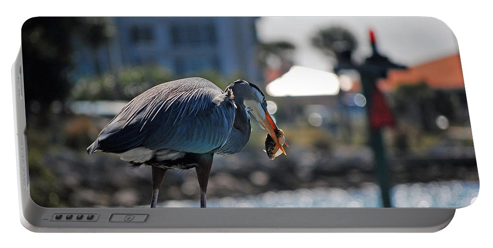 Gray Heron Portable Battery Charger featuring the photograph Fishing by Robert Meanor