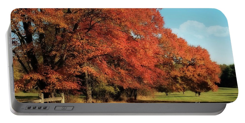 Autumn Portable Battery Charger featuring the photograph Flame Trees by Lois Bryan