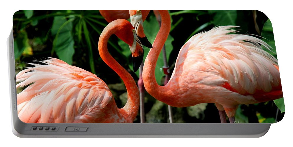 Pink Flamingo Portable Battery Charger featuring the photograph Flamingo Heart by Barbara Bowen