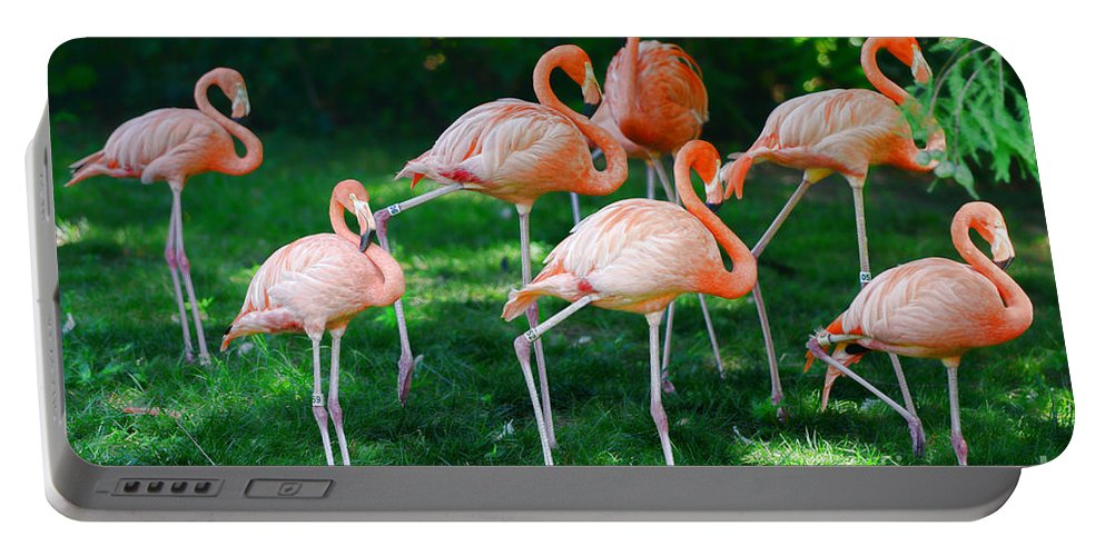 Flamingo Portable Battery Charger featuring the photograph Flamingo by Paul Ward