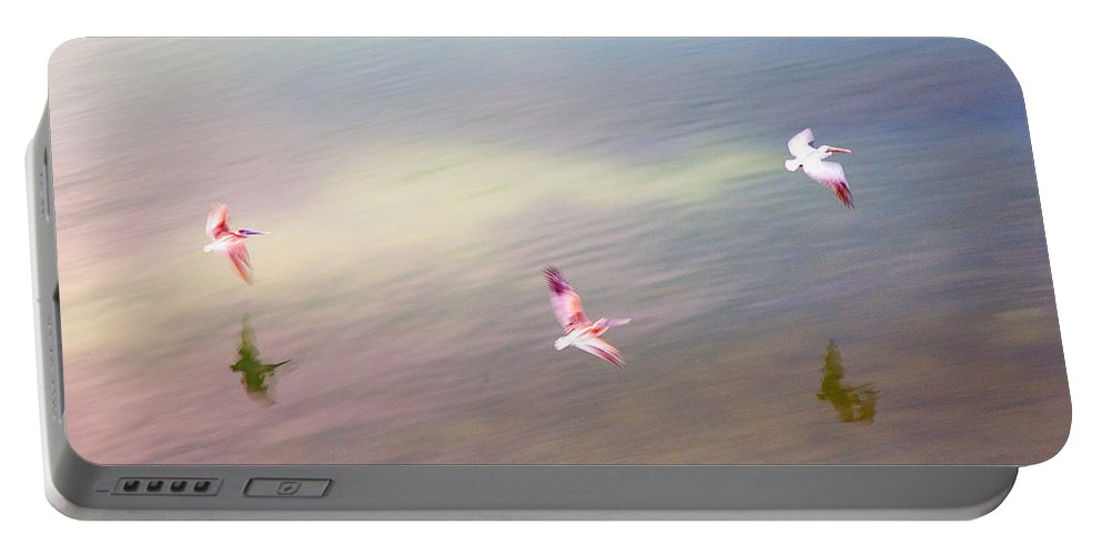 Pelicans Portable Battery Charger featuring the photograph Flight Impressions by Mal Bray