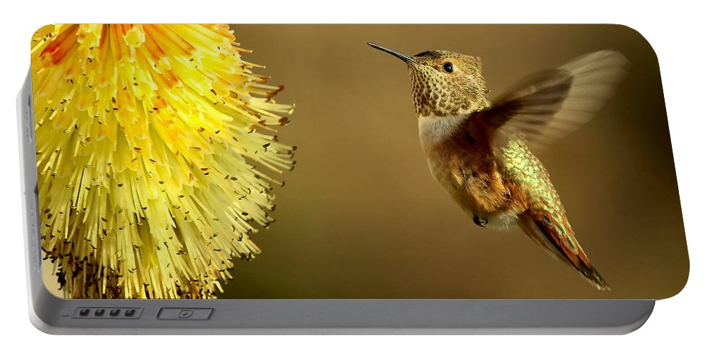 Hummingbird Portable Battery Charger featuring the photograph Flight Of The Hummer by Mike Dawson