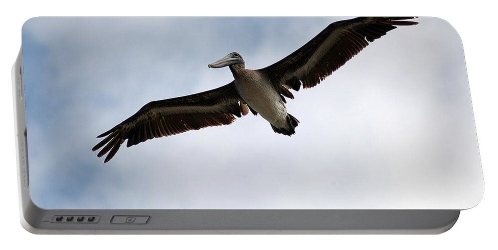 Clay Portable Battery Charger featuring the photograph Flight Of The Pelican by Clayton Bruster