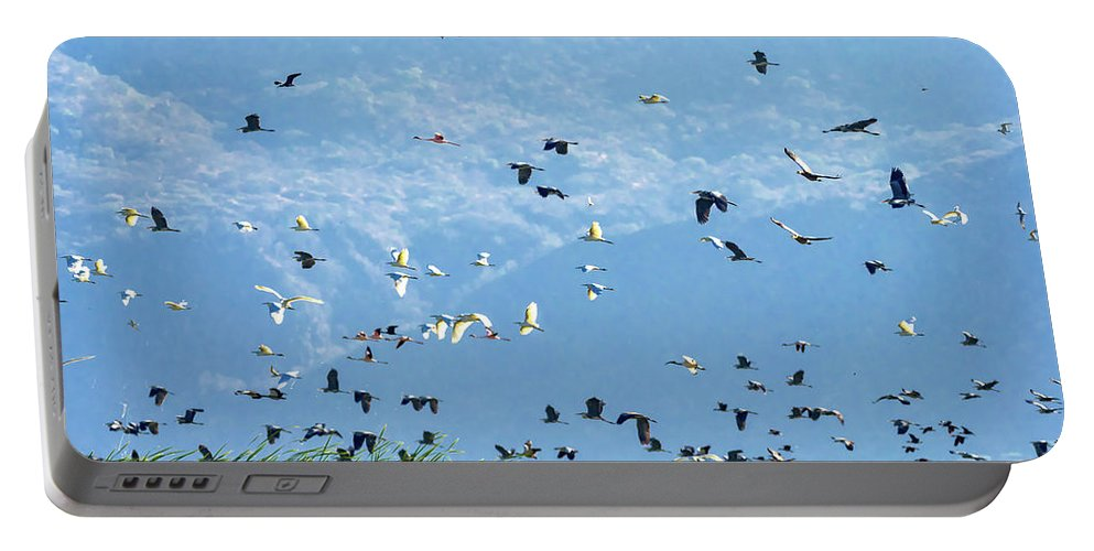 Flamingos Portable Battery Charger featuring the photograph Flight Over Lake Manyara by Robin Zygelman