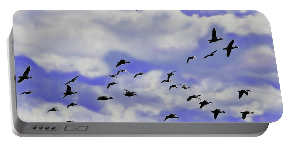 Birds Portable Battery Charger featuring the photograph Flight Over Lake by Miroslava Jurcik
