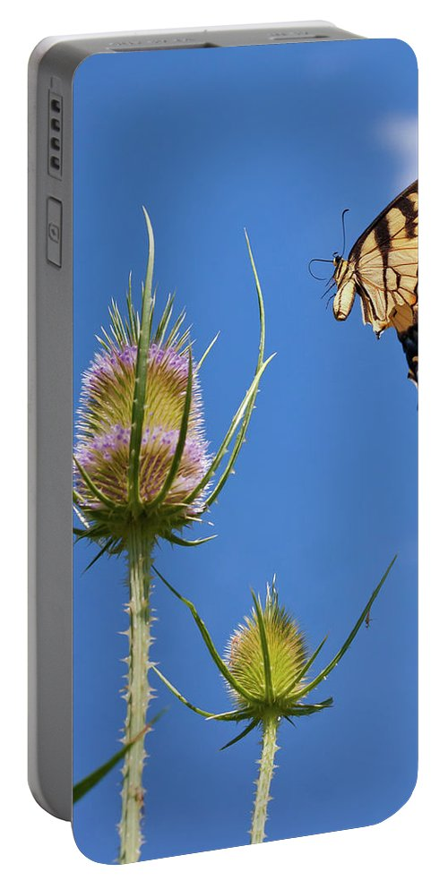 Butterfly Portable Battery Charger featuring the photograph Flight Risk by David Lamb