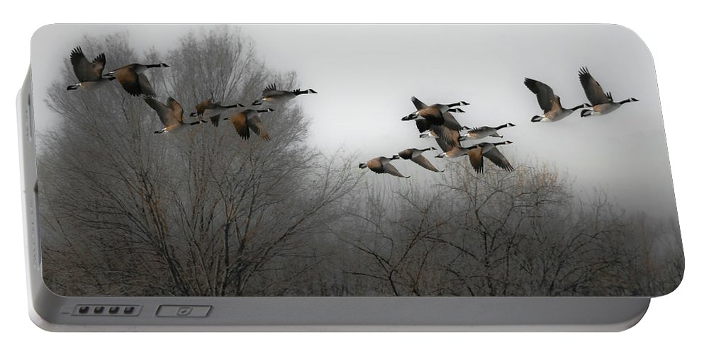 Birds Portable Battery Charger featuring the photograph Flight To The Fields by Kelly C Jones