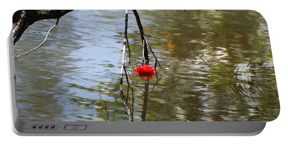 Water Portable Battery Charger featuring the photograph Floating Flower by Rob Hans