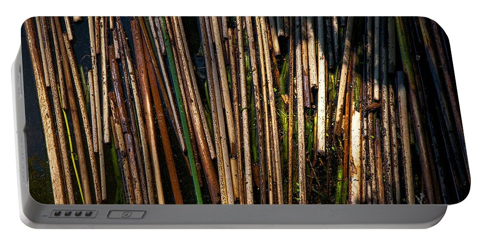 Nature Portable Battery Charger featuring the photograph Floating Reeds by Christopher Holmes
