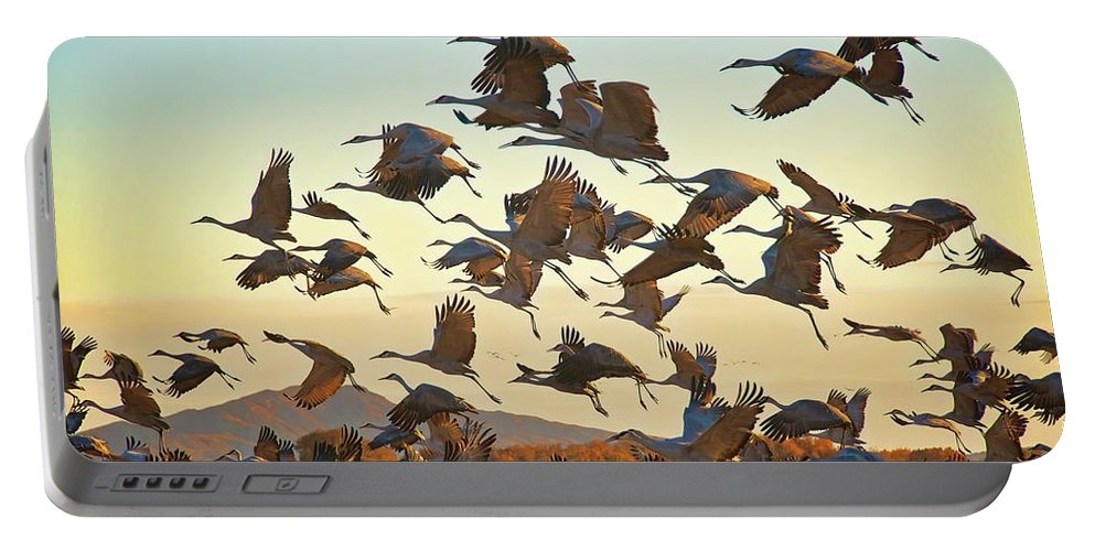 Nature Portable Battery Charger featuring the photograph Liftoff, Sandhill Cranes by Zayne Diamond Photographic