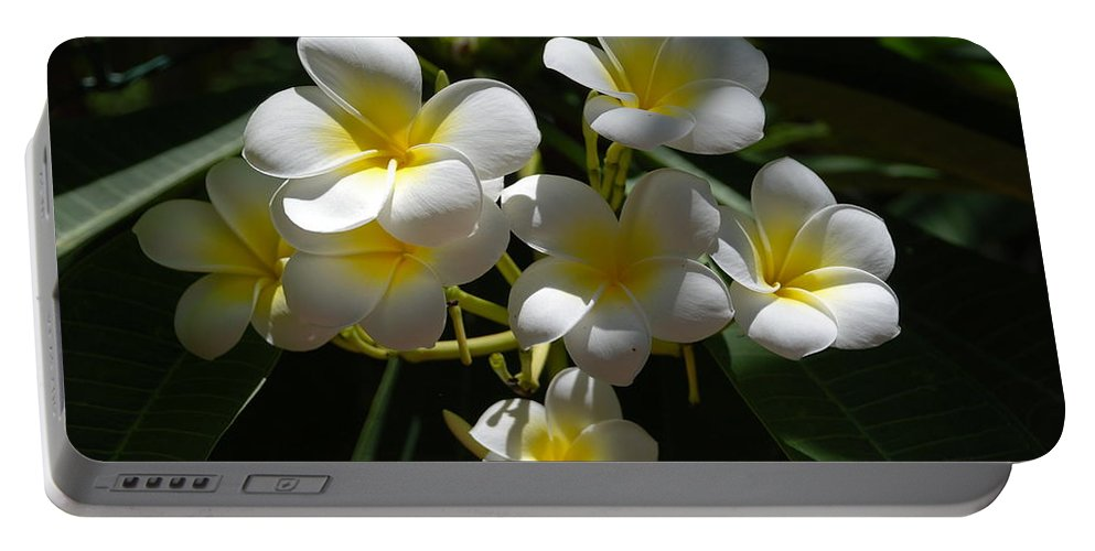 Nature Portable Battery Charger featuring the photograph Floral Beauties by Rob Hans