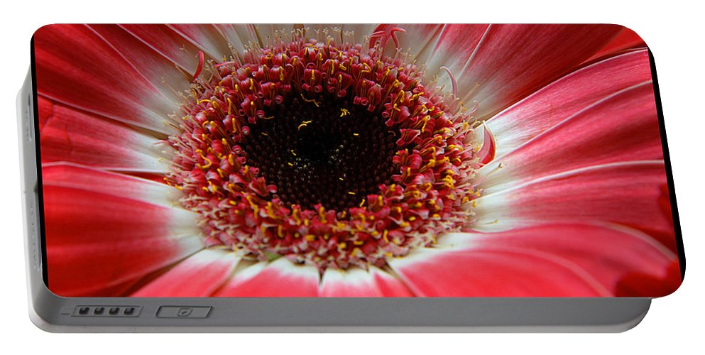 Clay Portable Battery Charger featuring the photograph Floral by Clayton Bruster