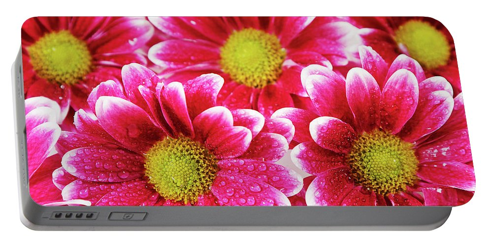 Background Portable Battery Charger featuring the photograph Floral Wallpaper by IPolyPhoto Art