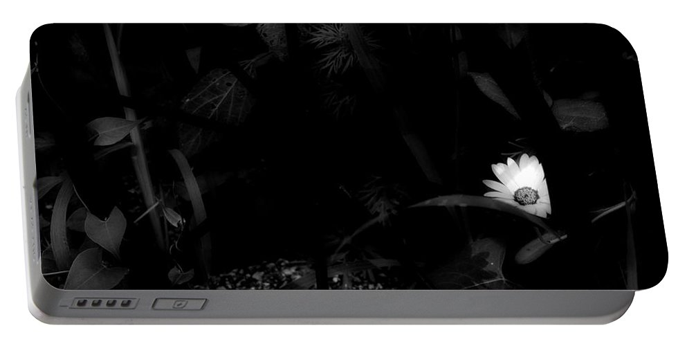 Flower Portable Battery Charger featuring the photograph Floral Yellow Peek A Boo Bw by Thomas Woolworth