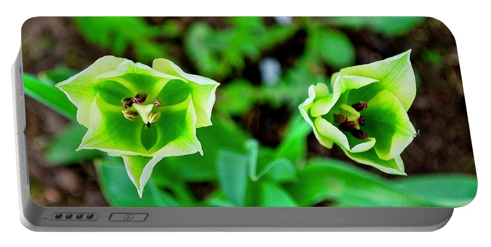 Florescent Portable Battery Charger featuring the photograph Florescent Green In Stereo by Wanda Gancarz
