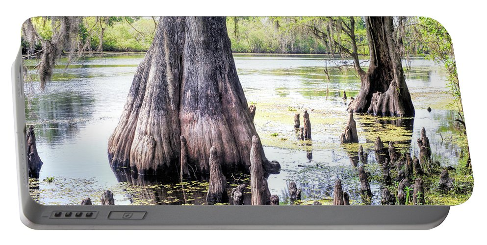 Photographs Portable Battery Charger featuring the photograph Florida Cypress, Hillsborough River, Fl by Felix Lai