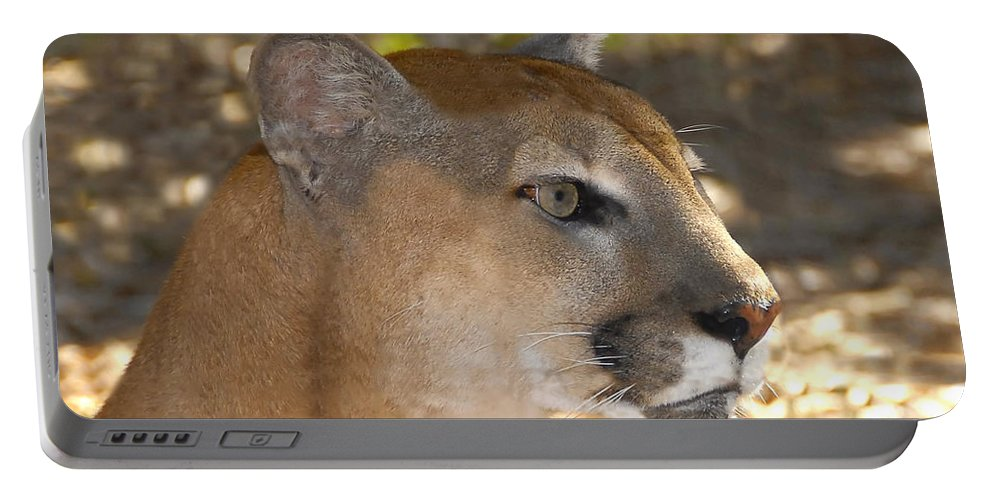 Florida Portable Battery Charger featuring the photograph Florida Panther by David Lee Thompson